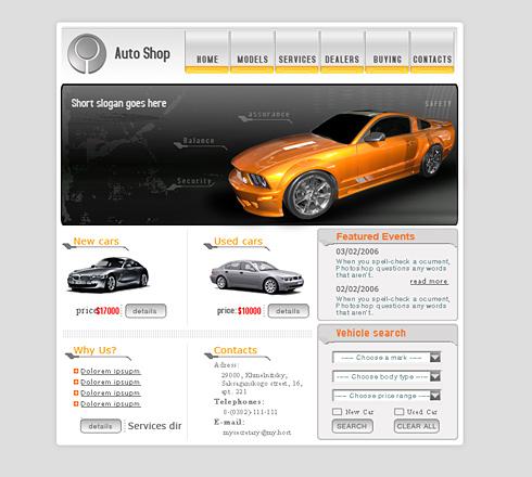Propriul site masini