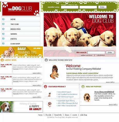 Pagini web